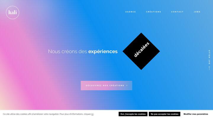 Agence digitale web & mobile à Lyon • kali