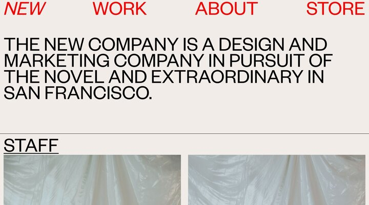THE NEW COMPANY — ABOUT